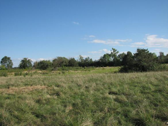 Wet prairie and hardwood swamp, to farm, to golf course, to...